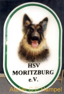 HSVMoritzburg