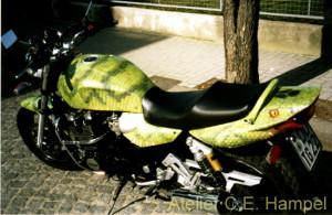 Schlangenbike1
