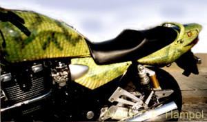Schlangenbike2